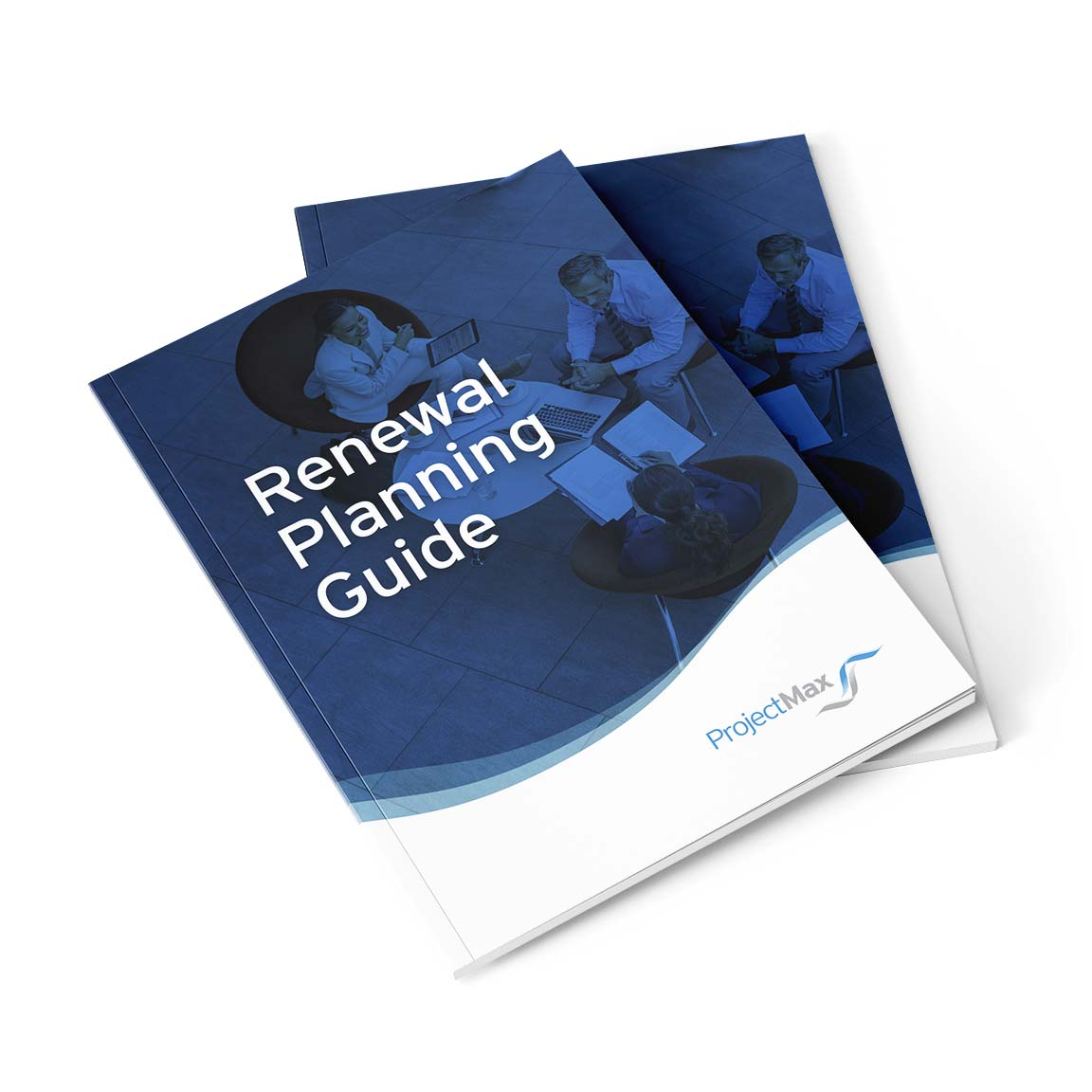 Renewal Planning Guide