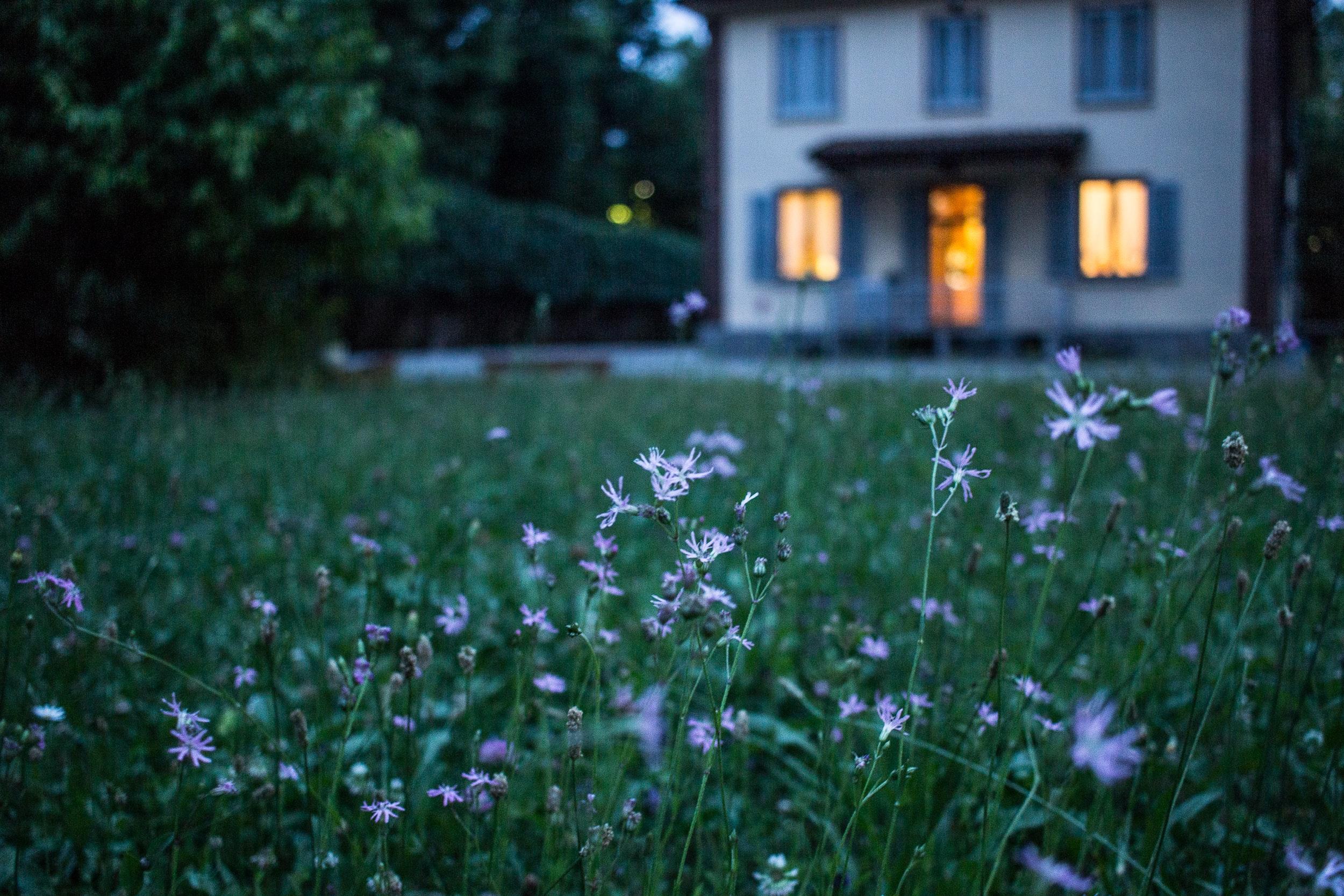 Ansambluri rezidențiale cu 52% spațiu verde