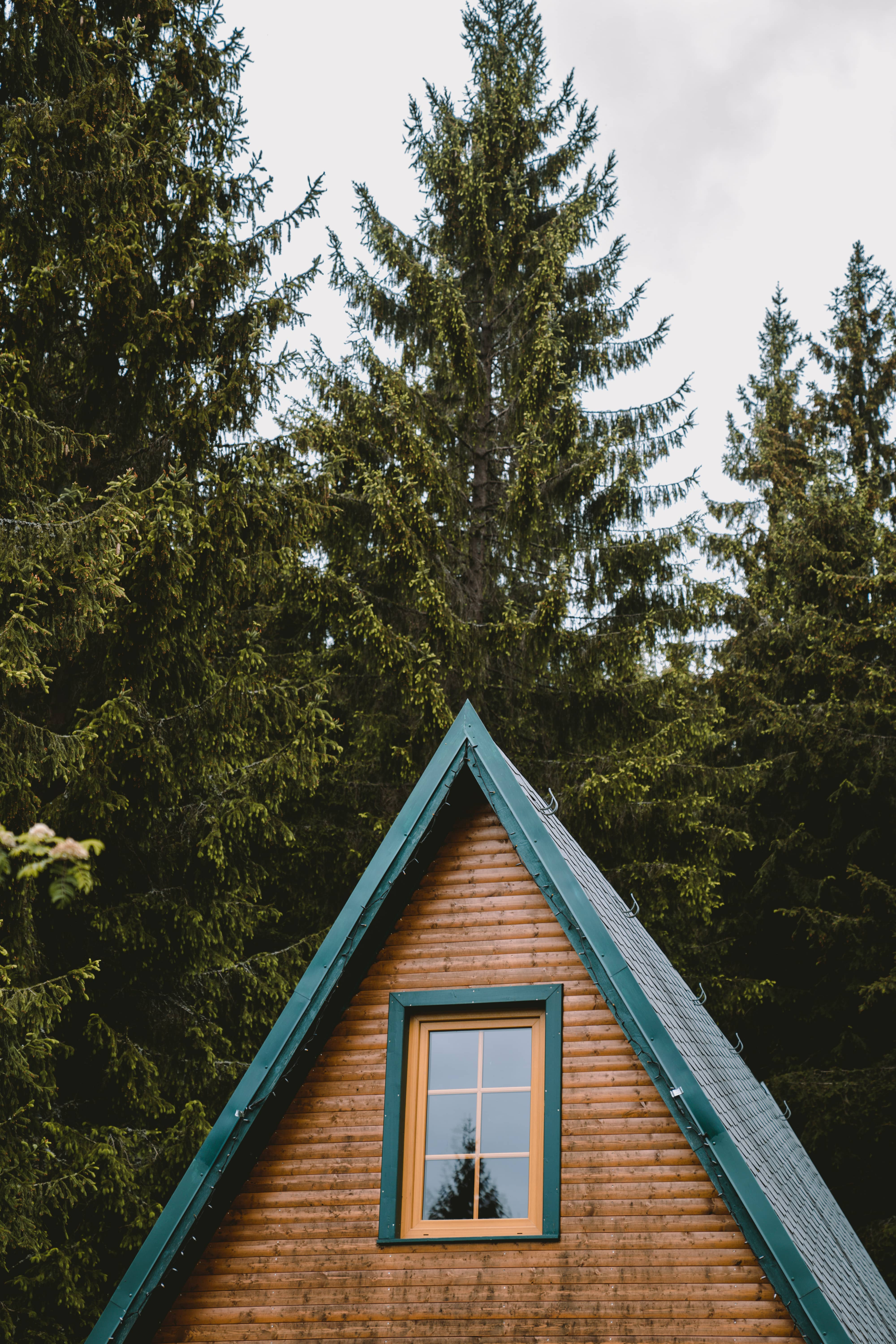 triangle shaped hut in Thüringen Germany surrounded by trees