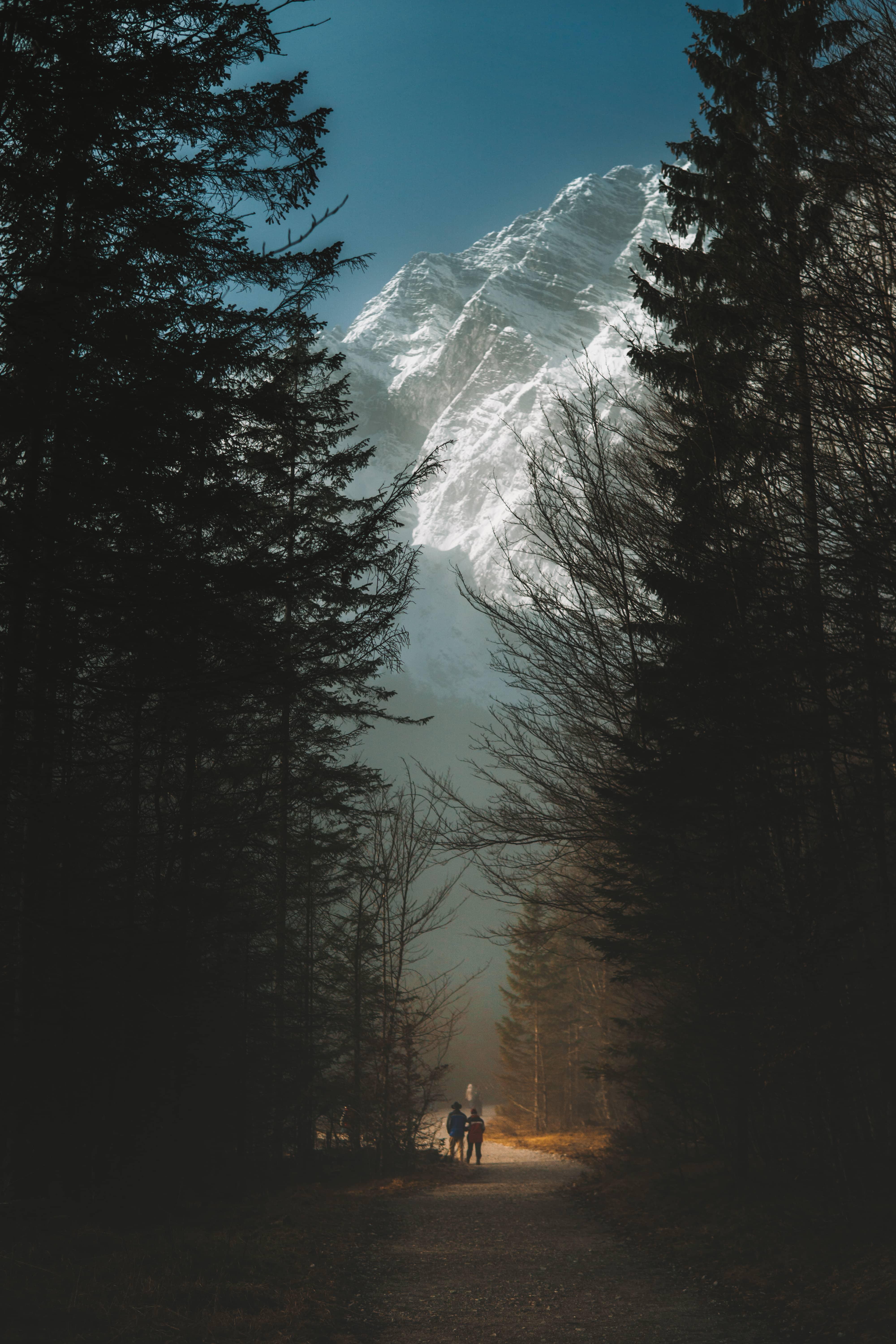 huge mountains surrounded by trees with two persons in front