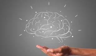 A hand under a drawn brain