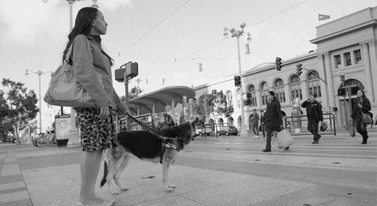 A woman with a seeing eye dog is waiting to cross a busy San Francisco street.