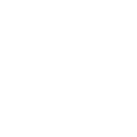 white linkedin logo