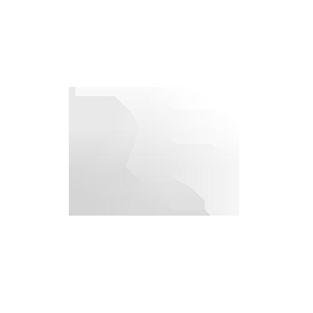 4 Brothers Gaming logo