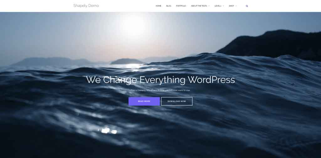 thème gratuit wordpress shapely