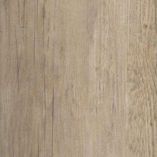Ristic Pine