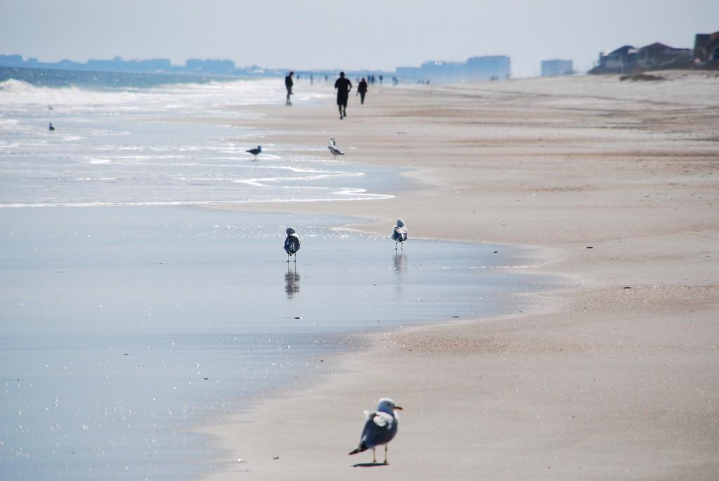 Fernandina-Beach-038