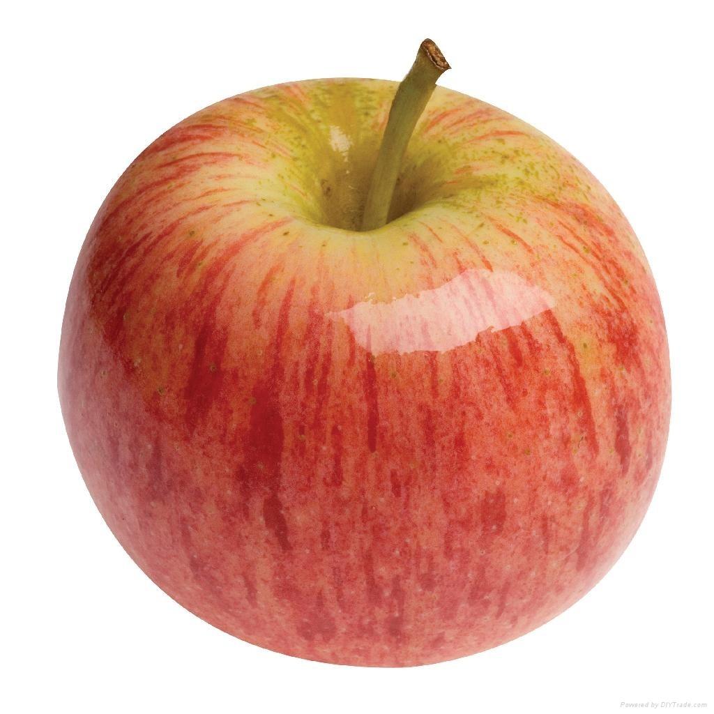 13-Healthy-Snacks-Work-_Apple