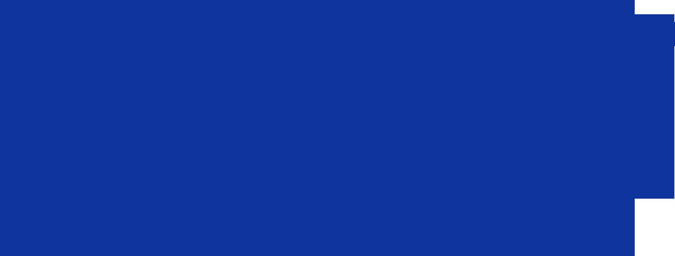 Logo Opti'Malin bleu