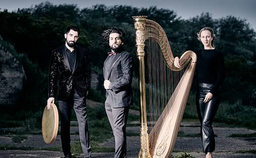 photography shoot of dorience marselje with her harp and two other musician on the left. Standing outside in front of bushes.