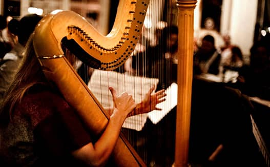 close up looking behind of doriene playing harp with other musicians in the foreground.