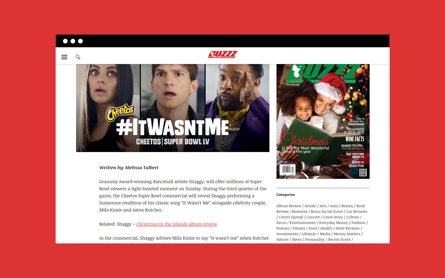 Single article layout on Buzzz's website