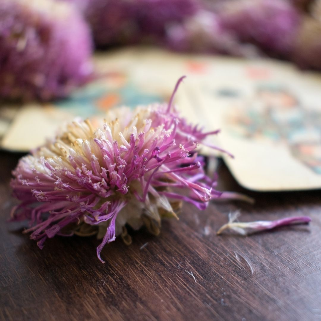 Purple flower on a wood table with tarot cards in the background.