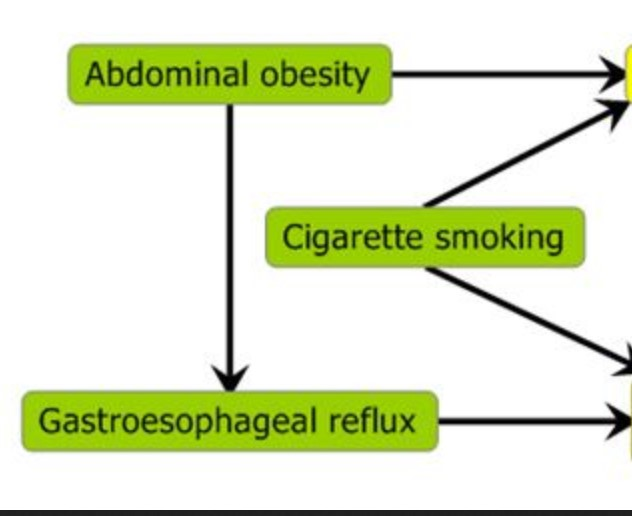 Diagram of risk factors and pathways