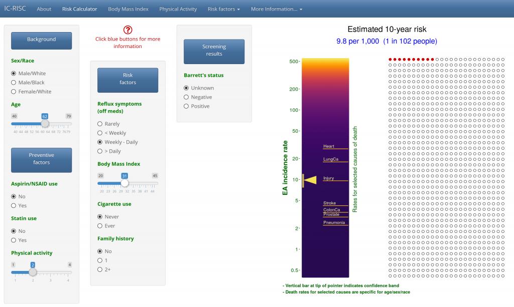 Screenshot of risk calculator