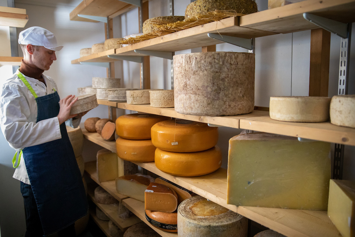 Shelves of cheese