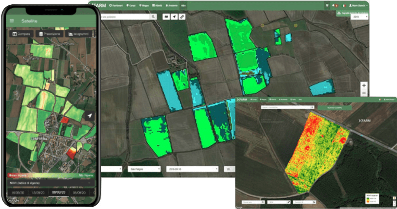 xFarm case study: The best way to get started with satellite crop monitoring