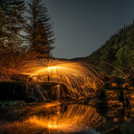 Night forest with light beams in orange. Technology and spectrum strategy