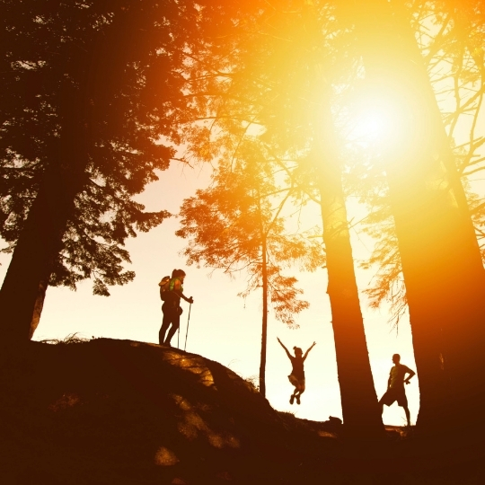 People hiking during sunset in a forest. Sun light in an orange colour.  This photo represents 5G spectrum license support.