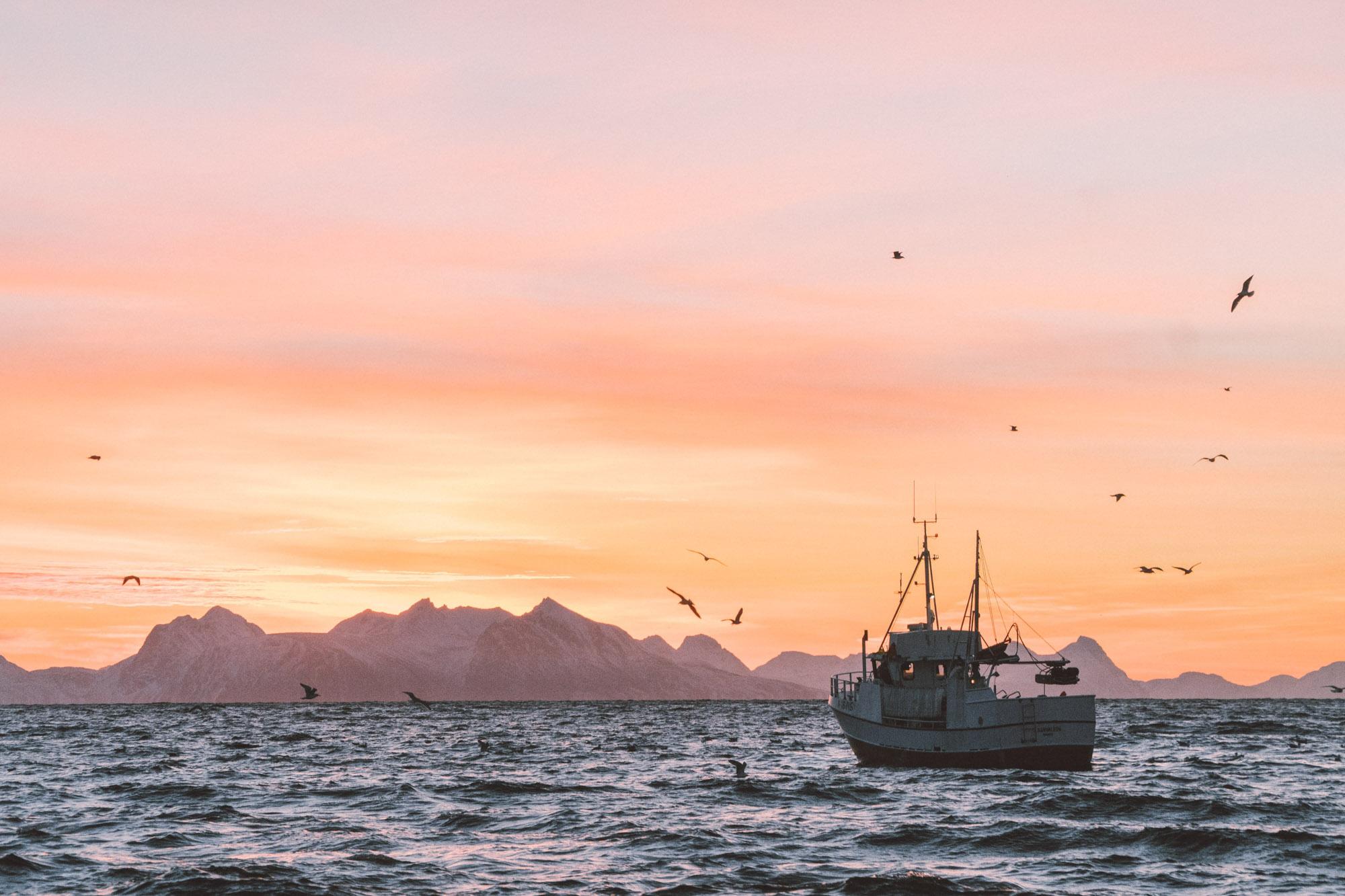 Fiskebåt ute på havet i midnattssol