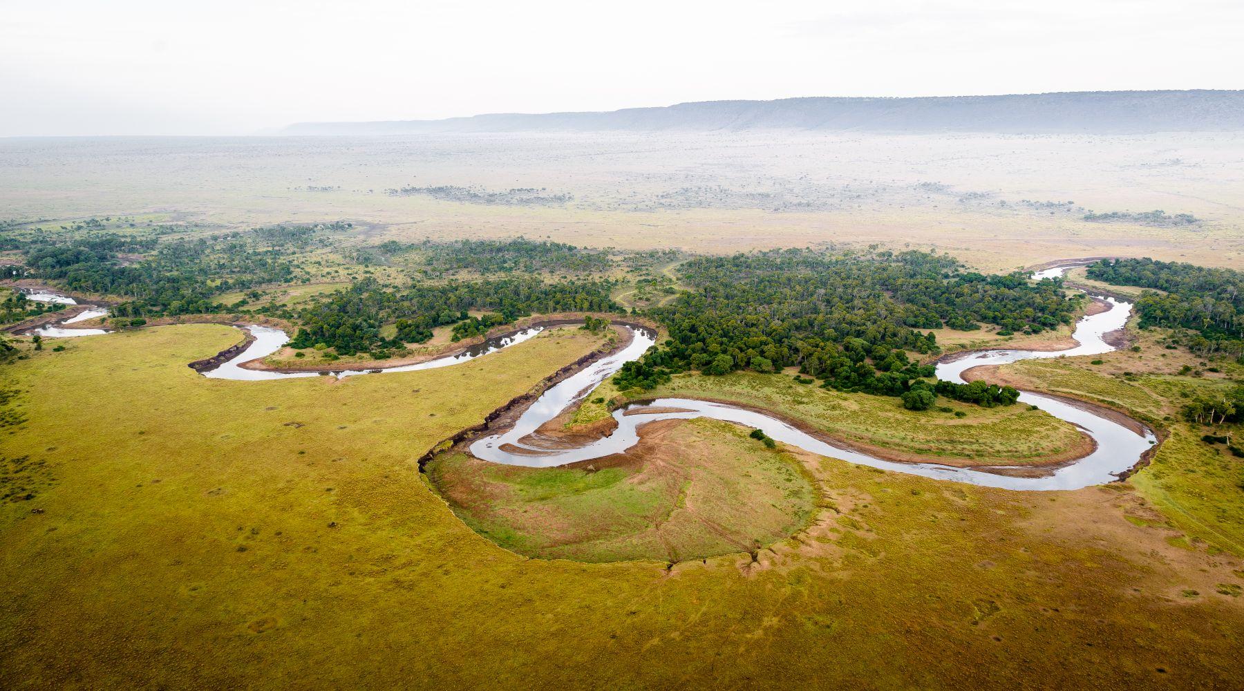 Olonana Camp, Rezerwat Masai Mara