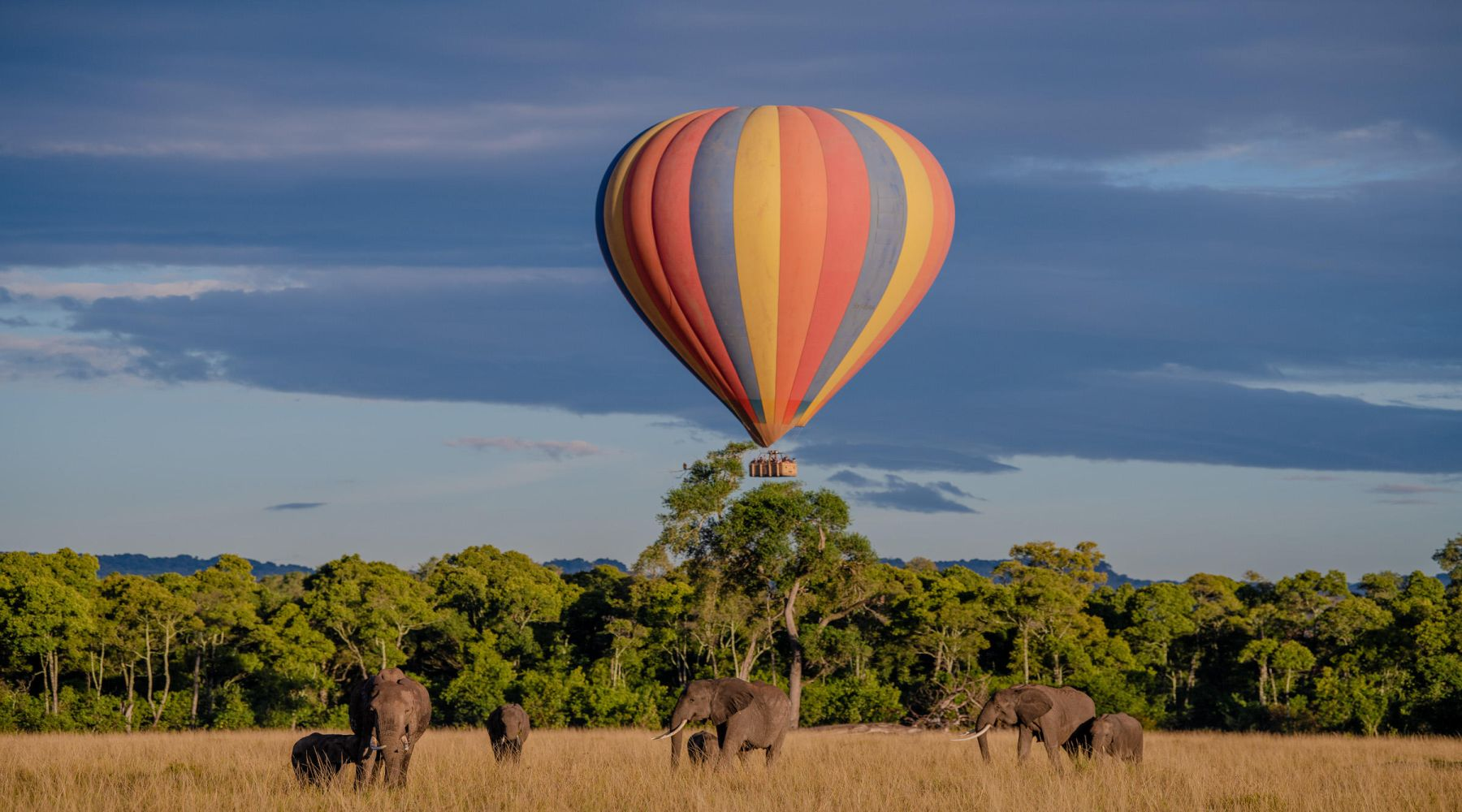 Little Governors' Camp, Rezerwat Masai Mara
