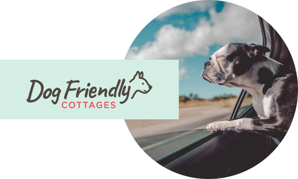 Dog Friendly Cottages hero image