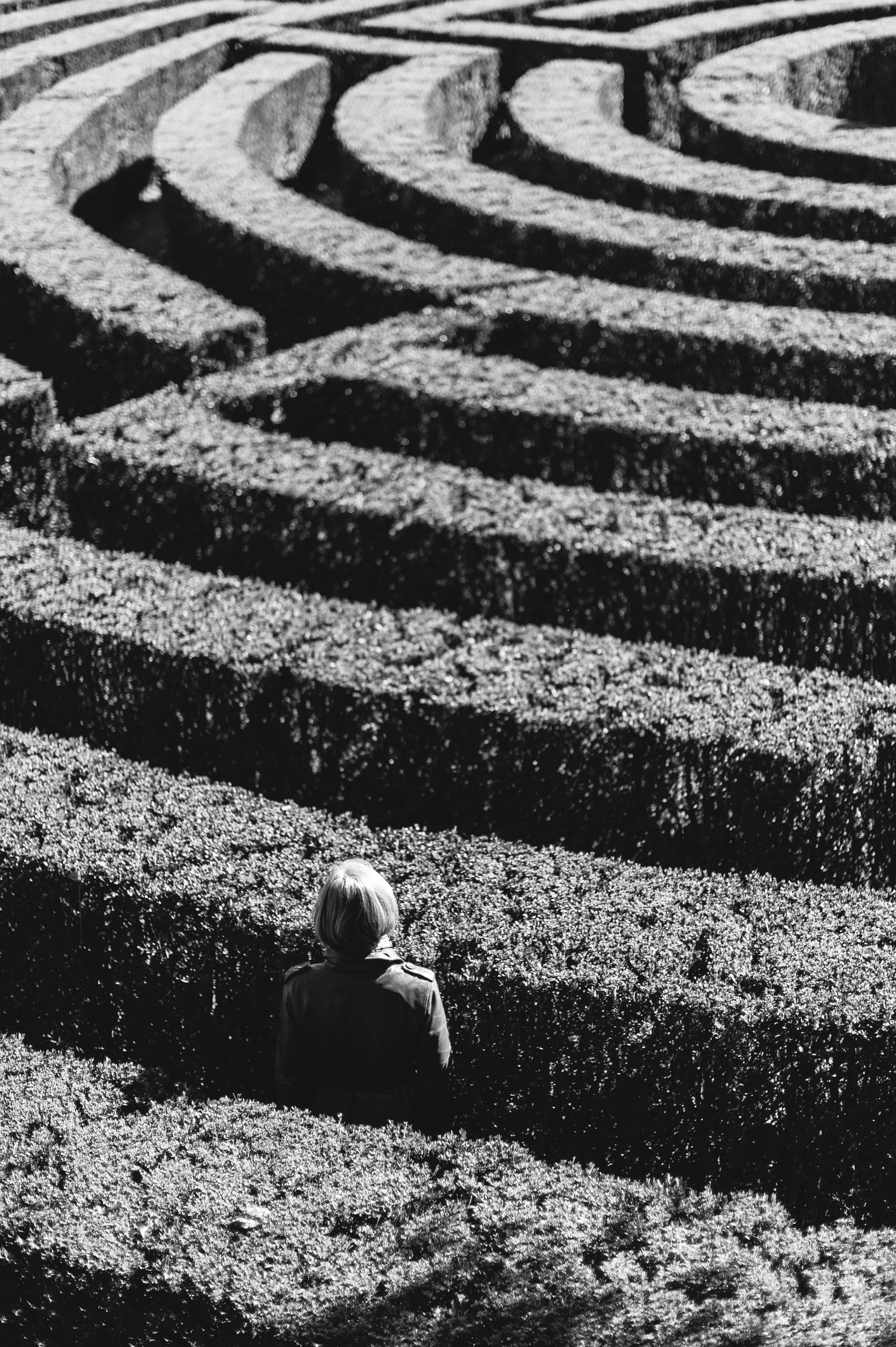A woman lost in a corn maze