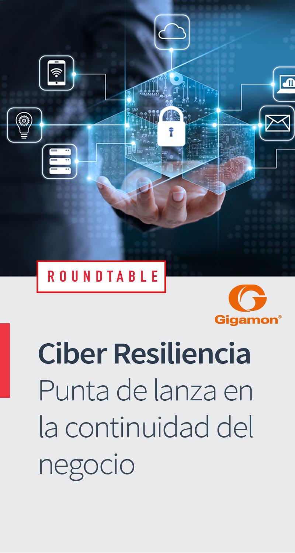 Ciber Resiliencia: Punta de Lanza en la Continuidad del Negocio