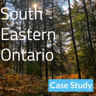 South Eastern Ontario Logo: tree seen from Kawarthas Ontario