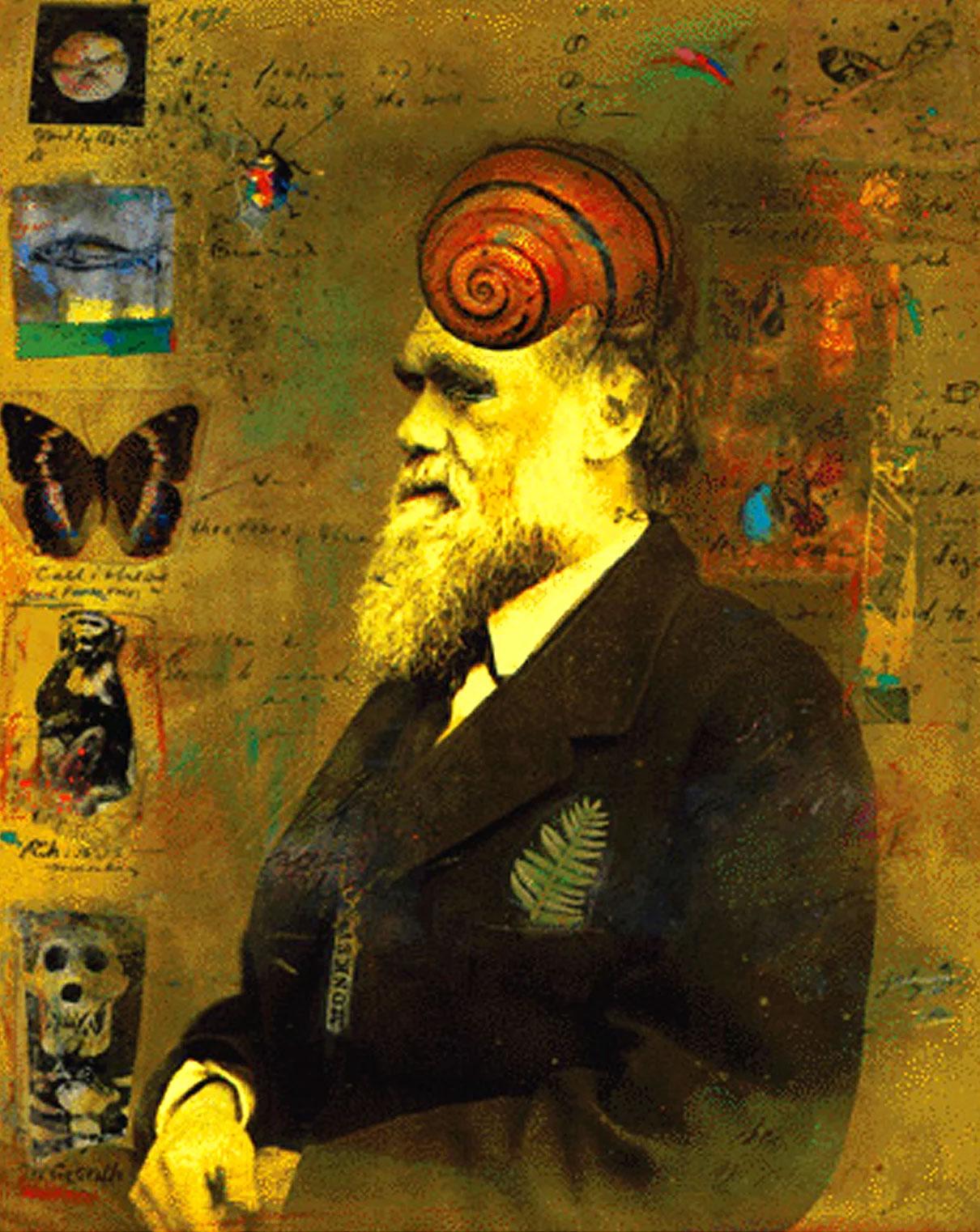 Michelle Barnes / The Origins of Darwin's Ills / Discover Magazine