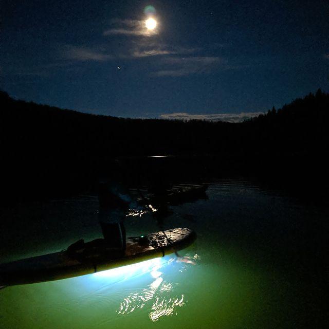 @NOCQUA glow lights on paddleboards
