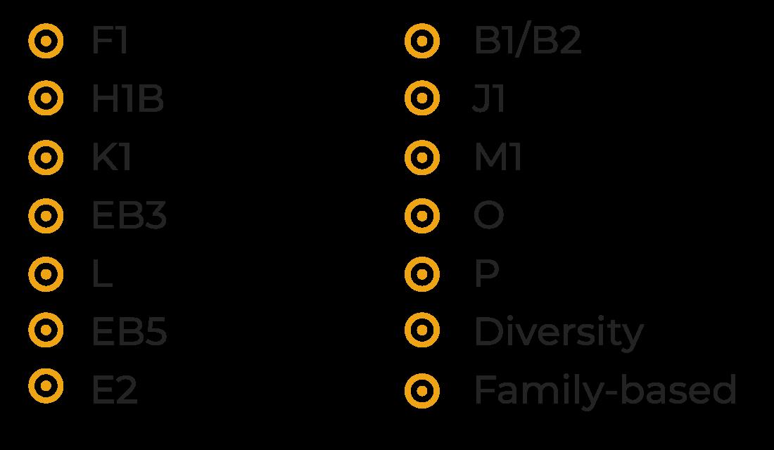 F1, H1B, K1, EB3, L, EB5, E2, B1/B2, J1, M1, O, P, Diversity, Family-based