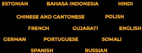 Estonian,  Bahasa Indonesia, Hindi, Chinese and Cantonese, Polish, French, Gujarati, English, German, Portuguese Somali, Spanish and Russian