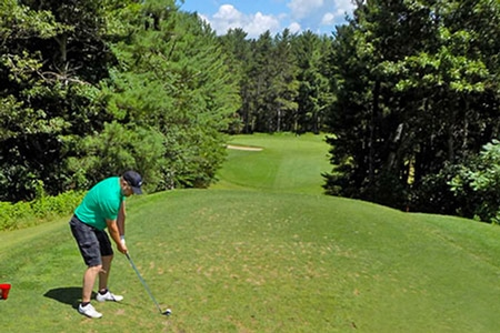 Several great golf courses in our area