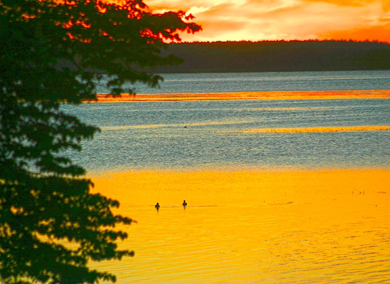 Beautiful sunrise over Leech Lake with two ducks floating peacefully on the lake.