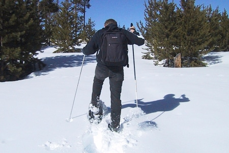 Person snowshoeing on a sunny winter day