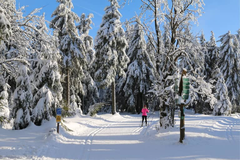 Winter skiing on groomed trails