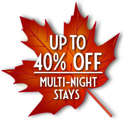 Fall colored maple leaf advertising up to 40% discount for 2+ night stays.