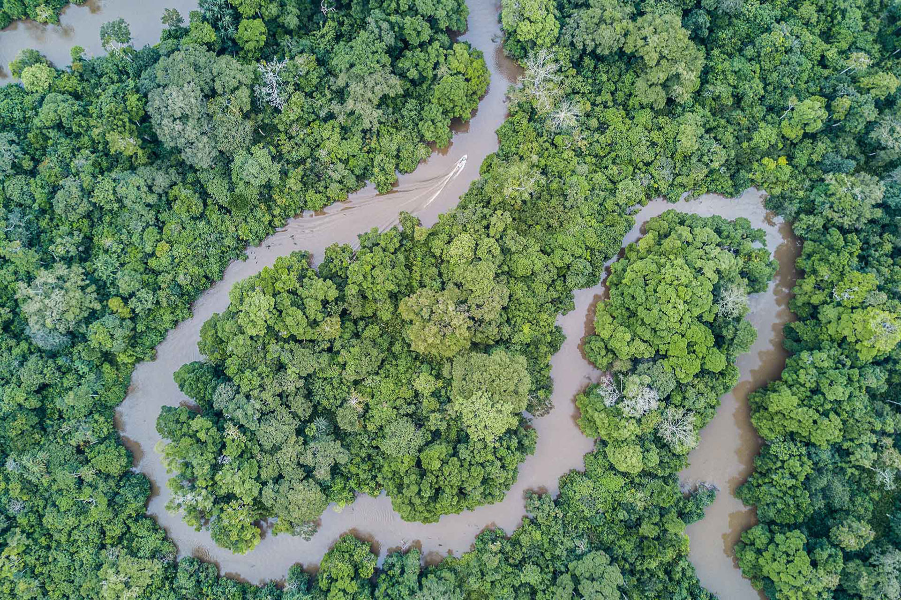 overhead shot of a large river