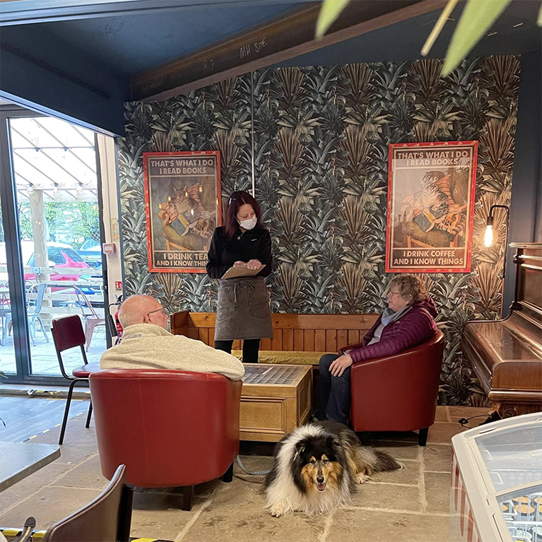 Image of Bookstore Cafe with lovely wallpaper & dog.
