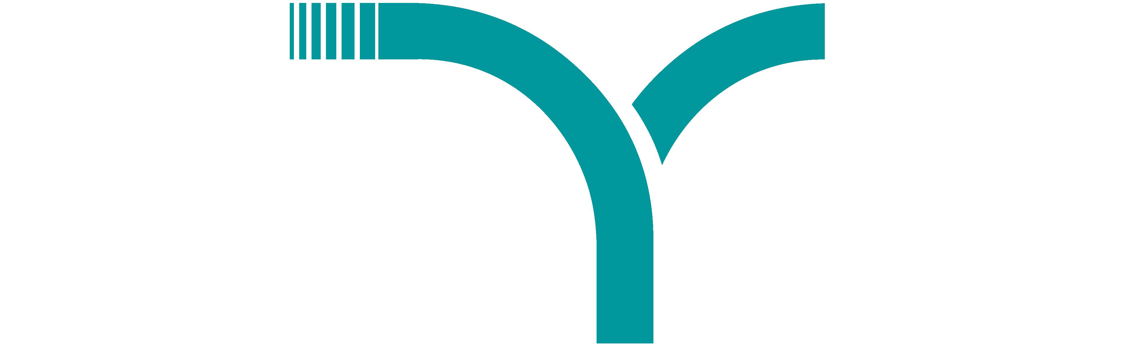 logo fizyou
