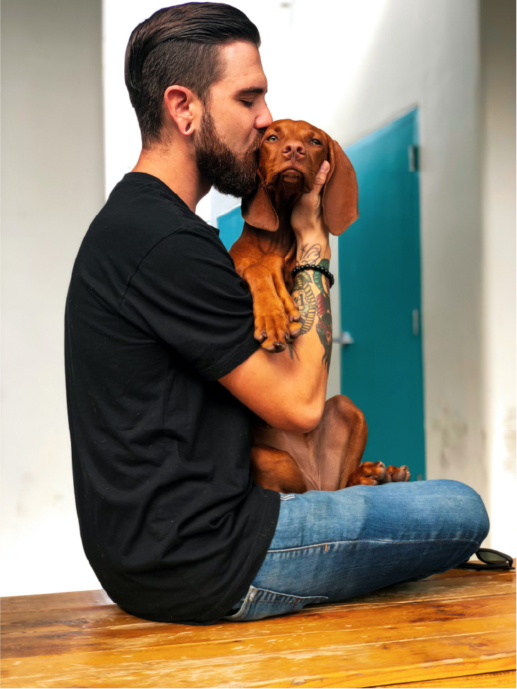 pet brand image