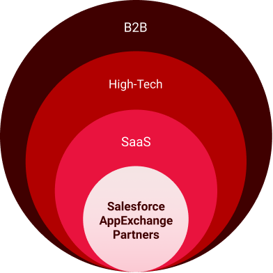 Diagram of Anthony's niche, which is Salesforce AppExchange Partners