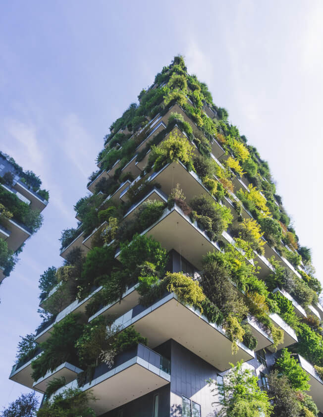 A building with plants growing in it