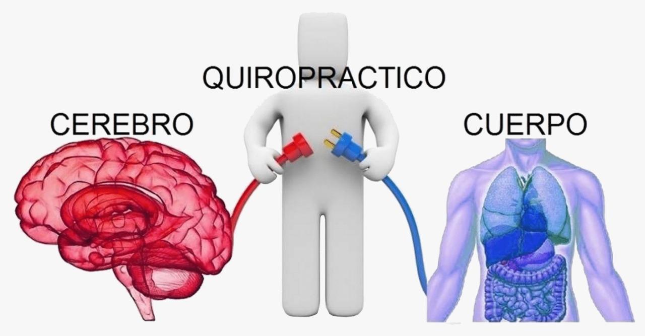 cerebro-quiropractic-cuerpo