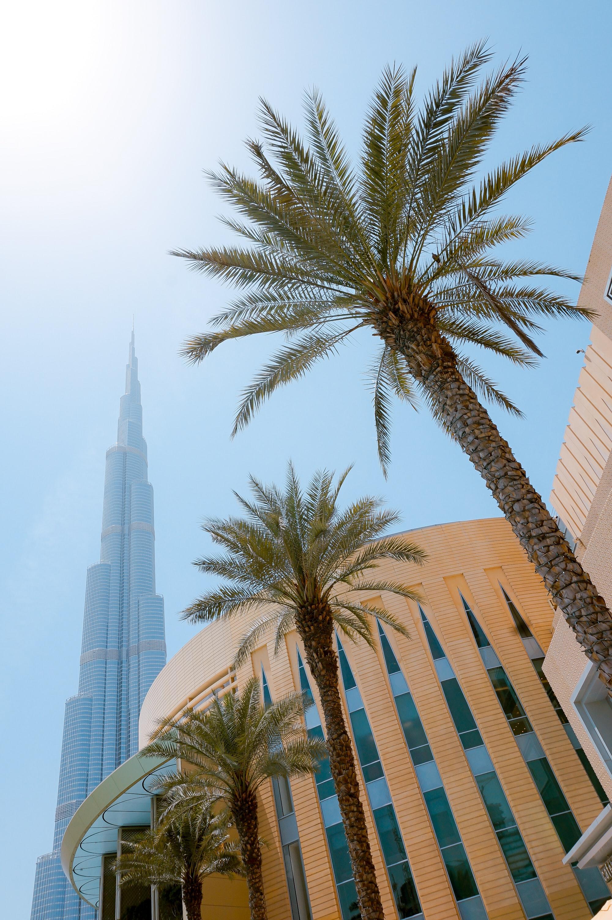 A picture of Dubai Mall with the Burj Khalifa in the background. Dubai, UAE