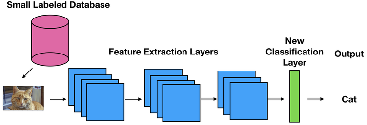 Image recognition - Extraction layers