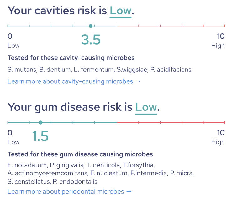 Bristle at-home cavity and gum disease risk report snapshot