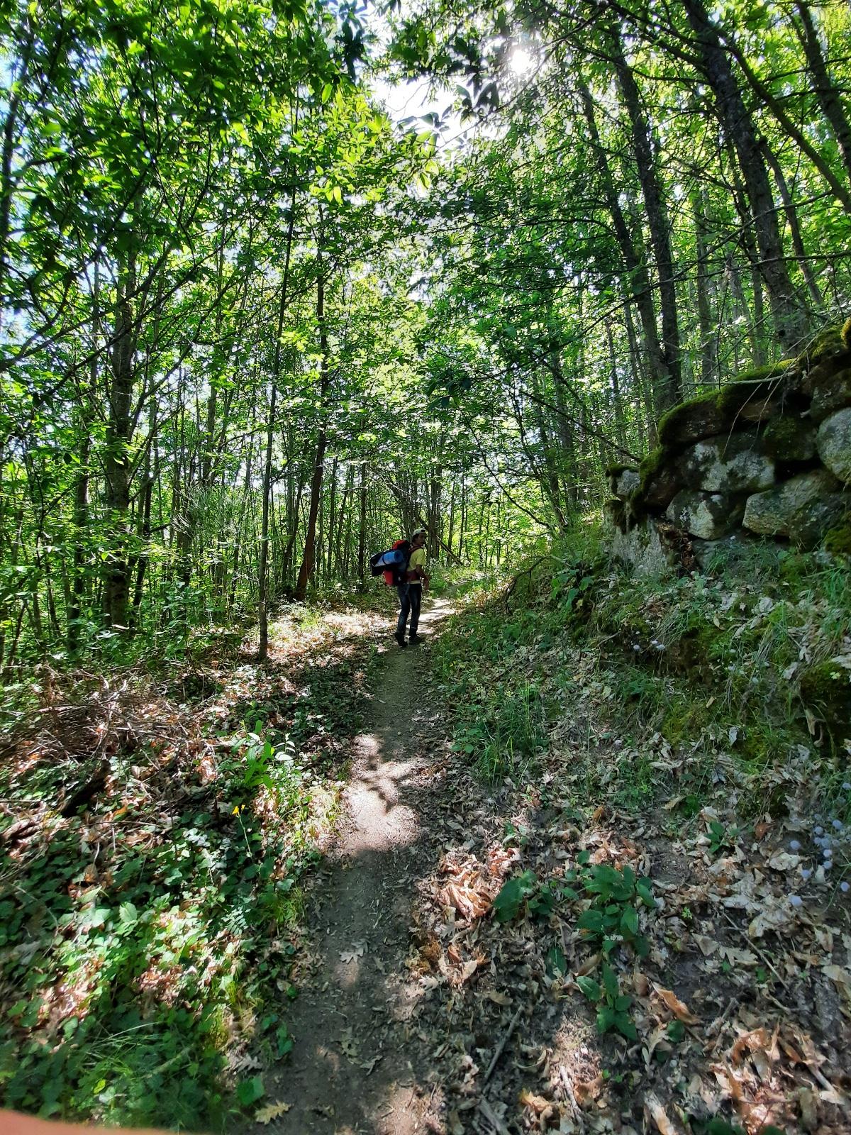 Ruta senderista en Cantagallo